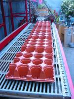 Empty Planting Trays on Rack